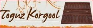 toguzkorgool.com